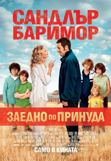 Blended / Заедно по принуда (2014)