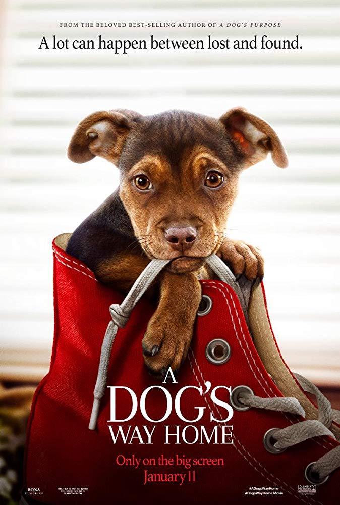 A Dog's Way Home / Пътят към дома (2019)
